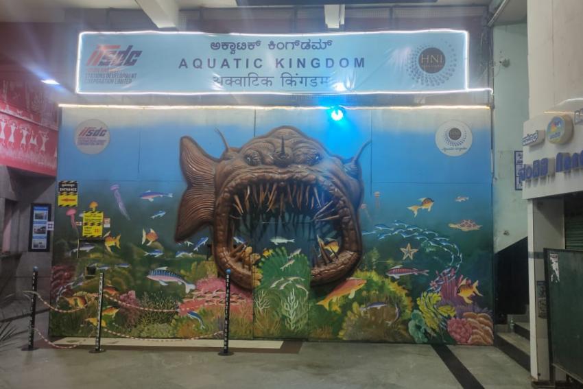 Bangalore Railway Station's New Tunnel Aquarium Gives Glimpses of Marine Life