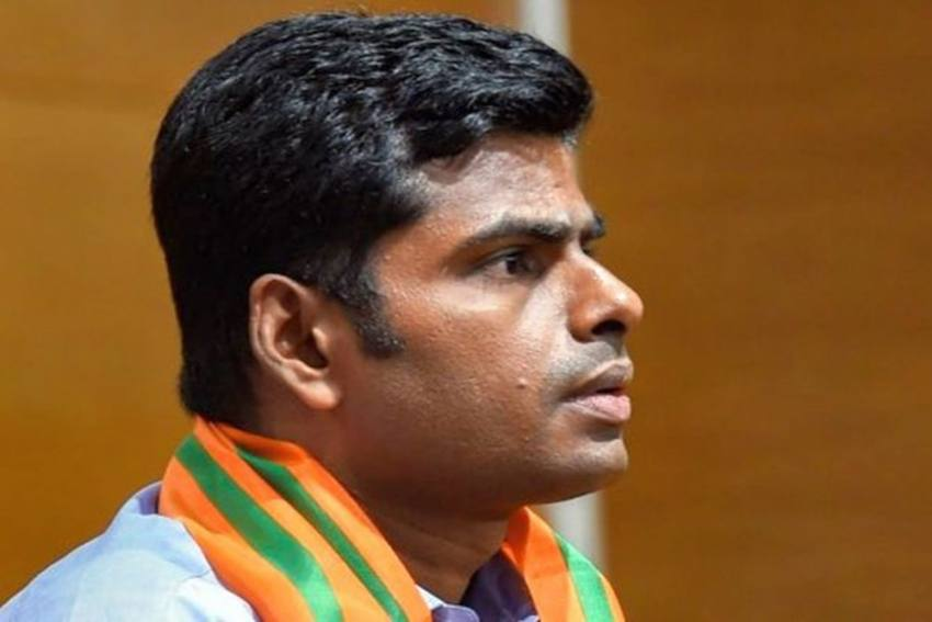 Annamalai's Appointment As Tamil Nadu Chief Is Part Of BJP's Growth Plan