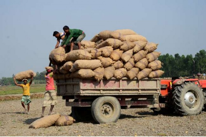 Marginal Rise In Retail Inflation For Farm, Rural Workers In July, Highest In Punjab