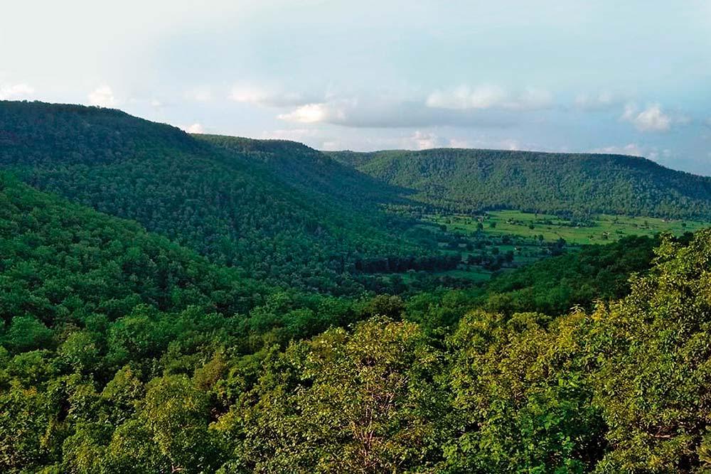 Rough Cut: One Man's Battle Against Diamond Mining In Madhya Pradesh Forest