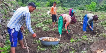 Helping Uttarakhand Farmers Scale New Heights