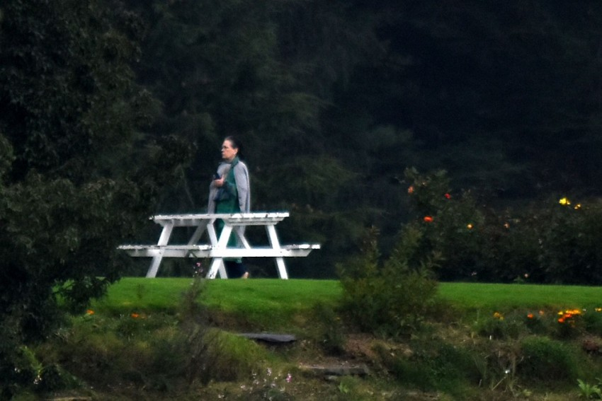 Gandhis' Day Out In Shimla's Misty, Cool Environs
