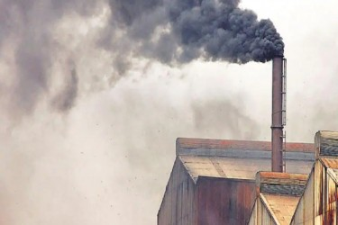 Explained: What are the WHO Global Air Quality Guidelines