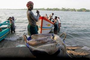 Indian Fishermen Attacked By Sri Lankan Navy Near Tamil Nadu Coast: Officials