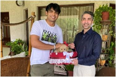 Puppy Love! Abhinav Bindra Gifts Neeraj Chopra 'Tokyo', Inspires Athletics Golden Boy For 'Paris'
