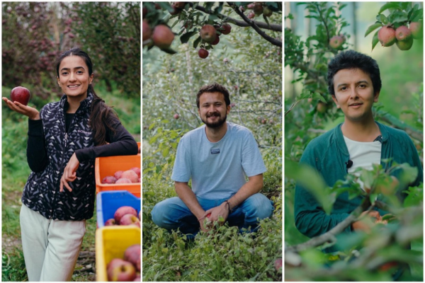 Third Generation Apple Producers In Himachal Pradesh Turn To Digital Solutions Amid Covid-19