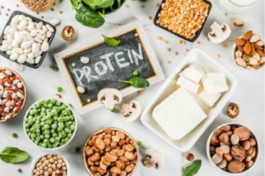 Protein Quality And Quantity – Key Factors To Achieve Good Health And Combat Malnutrition