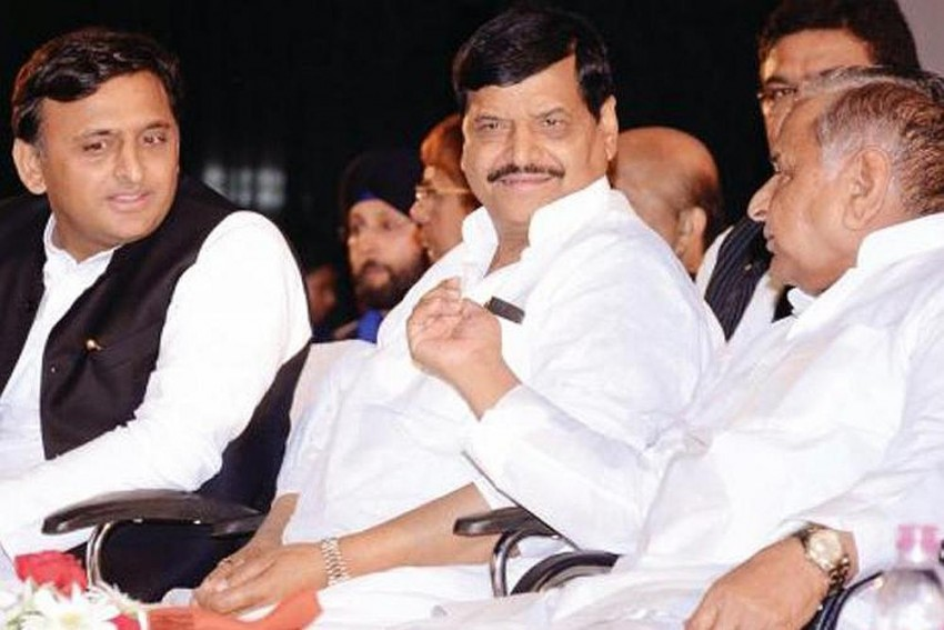 Sons, Brothers And The Samajwadi