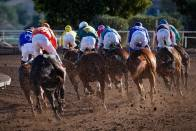 OPINION   Karnataka's Decision To Allow Online Horse Race Betting Good News For Online Gaming Sector