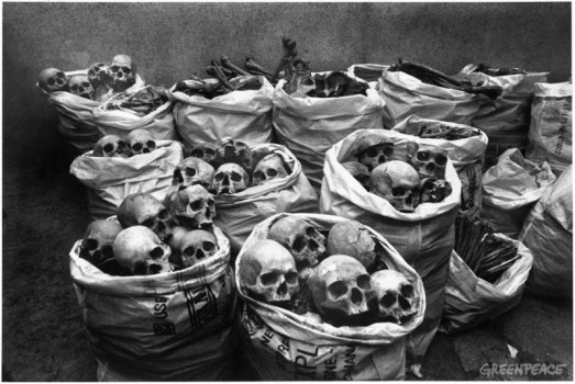 Skulls discarded after research at the Hamidia Hospital in Bhopal. Medical experts believe that the gas inhaled by the people of Bhopal may have affected the brain.