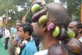A protest against Bt brinjal in New Delhi
