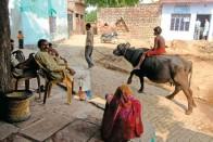 It Takes An Indian Village