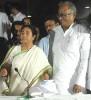 <b>His own man</b> Saugata Roy isn't in Mamata's charmed circle