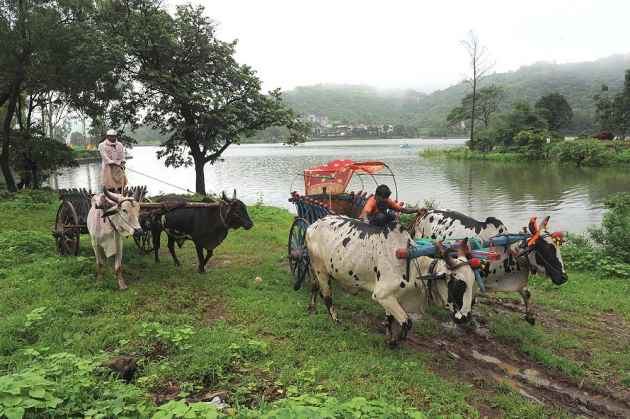 The Goa Dossier: Ghats Of Perdition