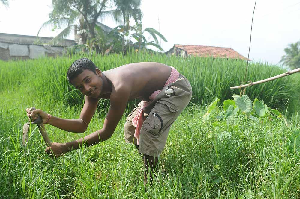 Subham Ghosh, Singur