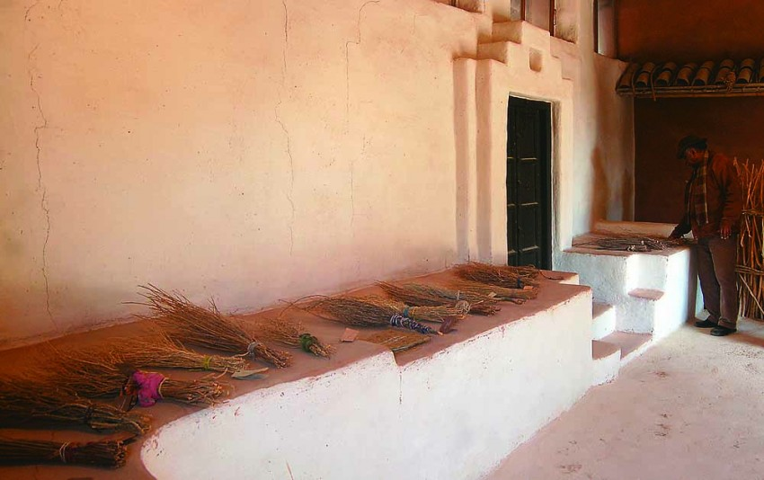 An Ethnology Of The Broom