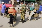BSF jawans with sniffer dogs checking luggage of passengers at Attari international border. The security have been beefed up in the region after the Sunday's suicide bomb attack at Wagah in Pakistan.