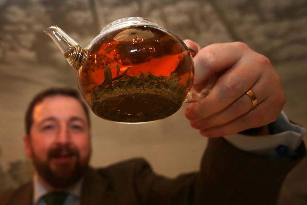 """A Tea Revolution Is Coming"""