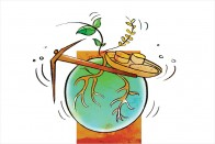 Soil To Soul: Combating Hidden Hunger