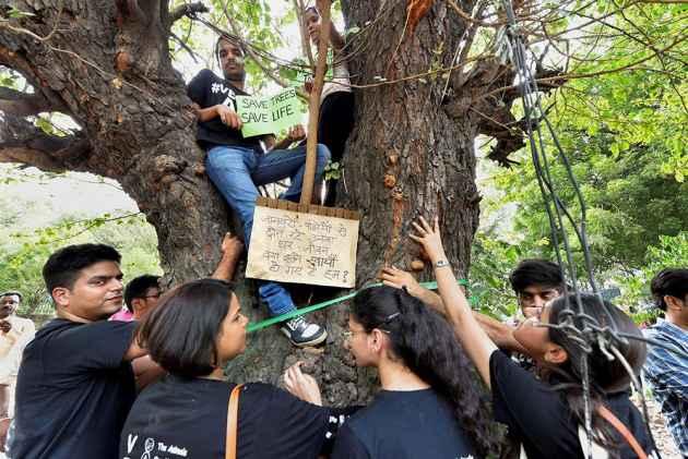 Massacre Of Delhi's Trees In The Name Of Development