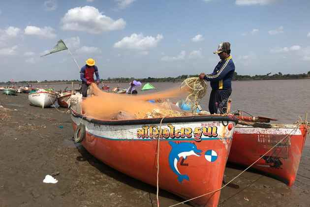 No Fish In Water Vapour: In Gujarat, Fishermen Are Suffering Due To Narmada Waters