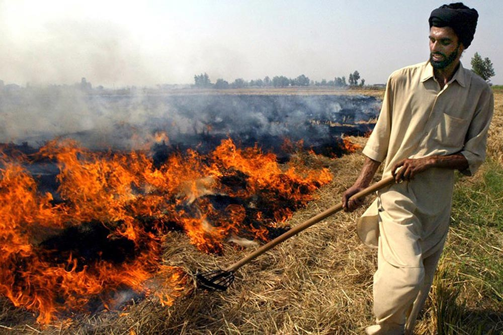Winter Is Coming And So Is Deadly Smog From Stubble Burning