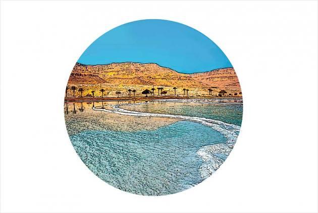 Dead Sea Diary