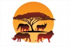 Maasai Mara Diary