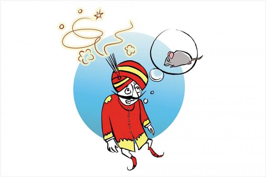 Air India, Rats!
