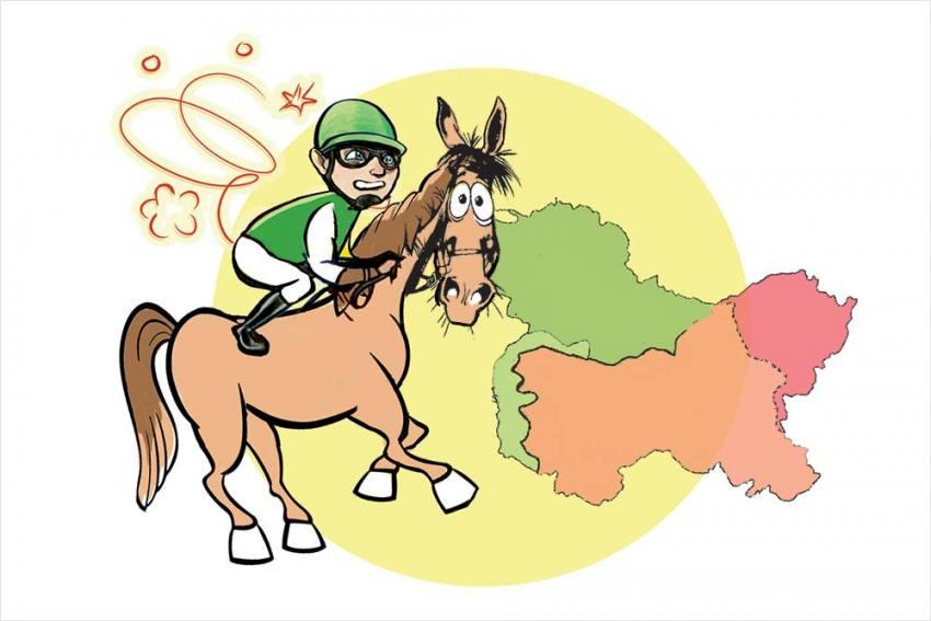 Azad Kashmir Makes Little Horse Sense