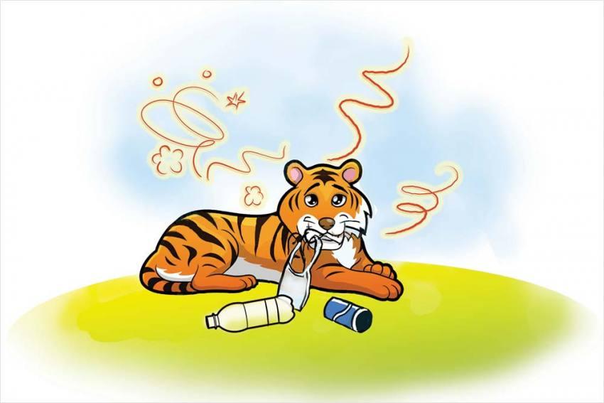 Paper Tiger, Plastic Tiger