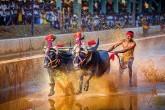 Srinivas Gowda (Jockey)