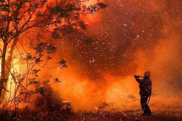 Wildfires Wreak Havoc In Greek Forests, Cut Large Island In Half
