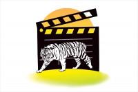 White Tiger Diary
