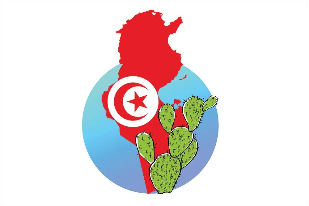 Tunisia Diary: Did Hannibal Eat Hindi And Wear a Sari?