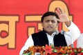 Don't Endorse The 'Donkeys Of Gujarat', Akhilesh Tells Amitabh Bachchan