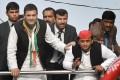 BJP's 'Tsunami' In Uttar Pradesh Blew Away 75 Percent Of Akhilesh's Ministers