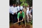 In New Role, Tendulkar to Do His Bit to Improve Mumbai Cricket