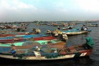 Twelve Indian Fishermen Arrested By Sri Lankan Navy