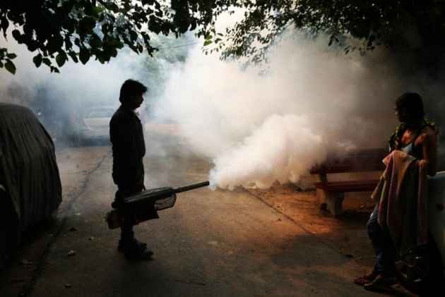 Over 500 Dengue Cases Reported in the Capital, Malaria 385, Chikungunya 283