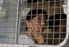 Gujarat High Court Bench Recuses From Naroda Patiya Riots Case